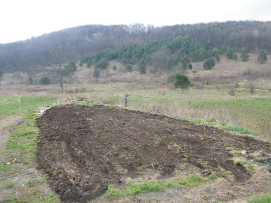 Little Garden Tilled