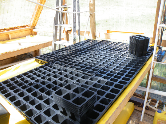 New Planting Cells
